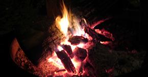 Camp cooking tin foil meals