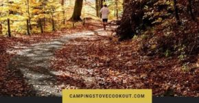 8 Crazy Reasons to Start Trail Running plus Trail Tips
